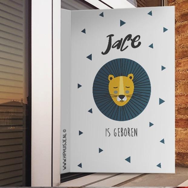 geboortebord leeuw in blauw raam sfeer leeuw hiphuisje