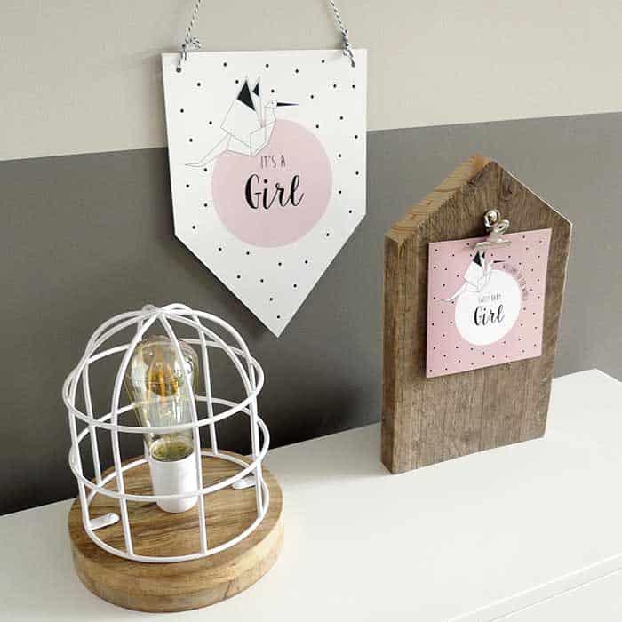 geboortevaantje meisje meisjegeboren kraamcadeau kraamkado kraamfeest kaart geboorte hiphuisje
