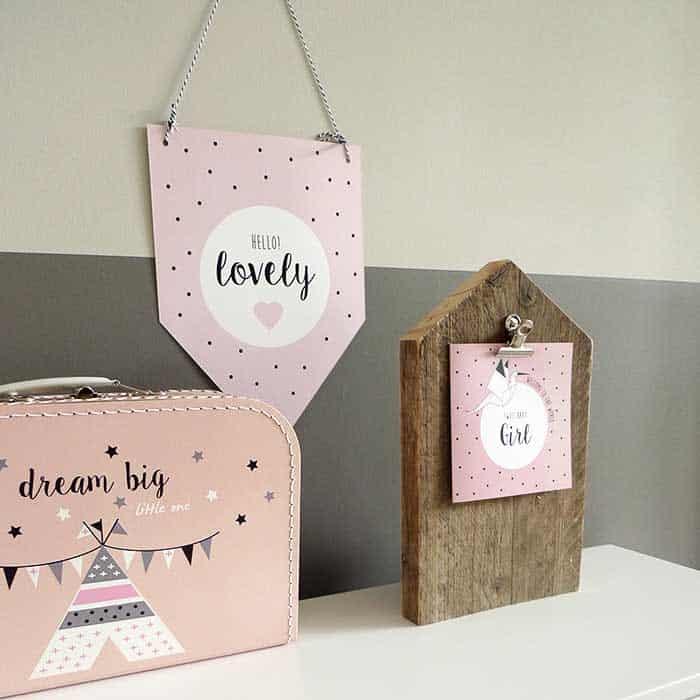 kraamcadeau meisje kinderkoffertje roze meisje geboortevaantje kaartje vaantje hiphuisje