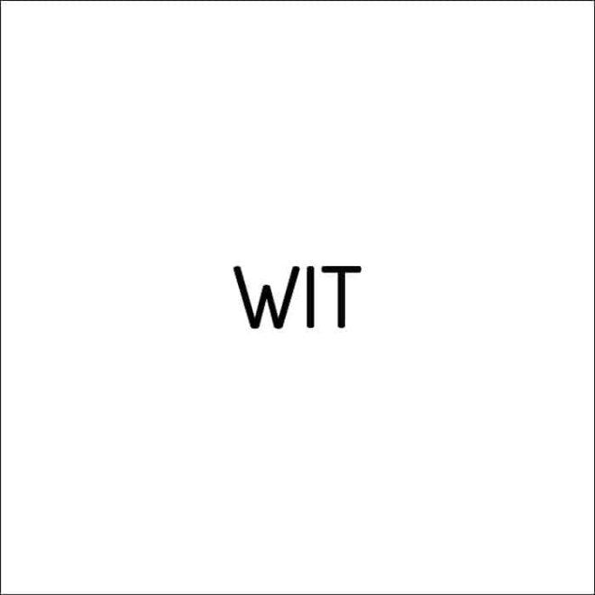 wit 19